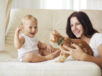Safe Furniture Cleaning For Children and Pets